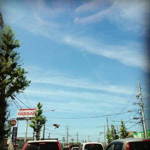 photo:夏なる